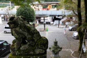 氷川神社臨時駐車場 入口を見下ろす
