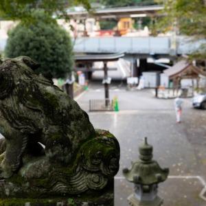 氷川神社臨時駐車場