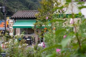 カフェぶなの木 お花畑からの外観