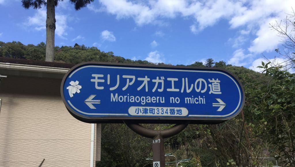 「モリアオガエルの道」の標識